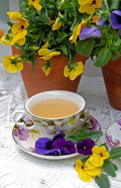 immagini-buongiorno-fiori_12