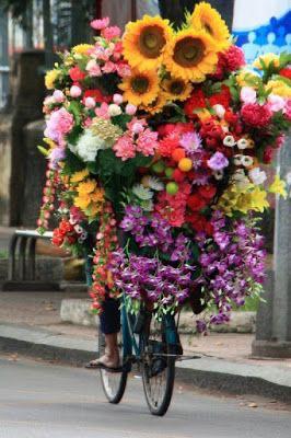 immagini-buongiorno-fiori_13