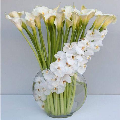 immagini-buongiorno-fiori_22