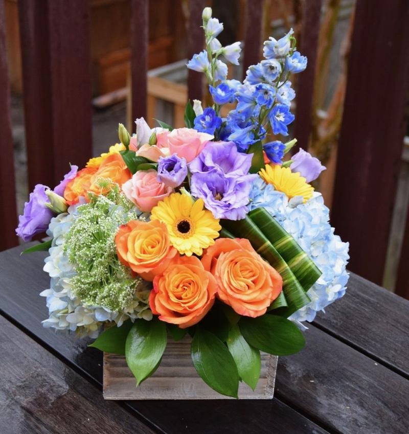 immagini-buongiorno-fiori_25