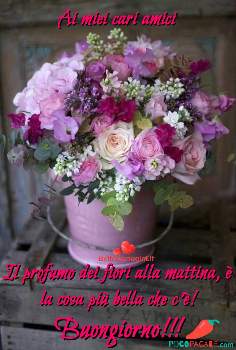 immagini-buongiorno-fiori_34