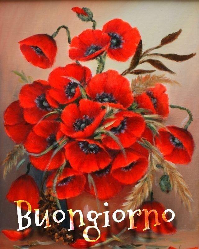 immagini-buongiorno-fiori_41