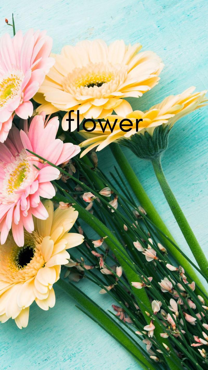 immagini-buongiorno-fiori_54