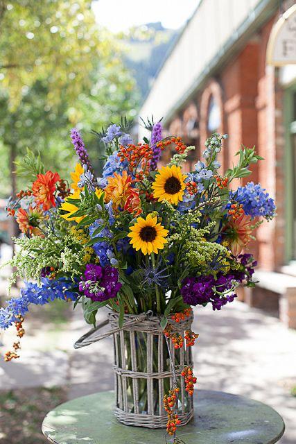 immagini-buongiorno-fiori_56