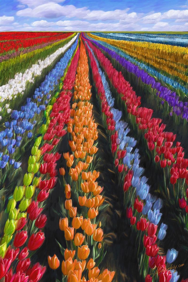 immagini-buongiorno-fiori_61