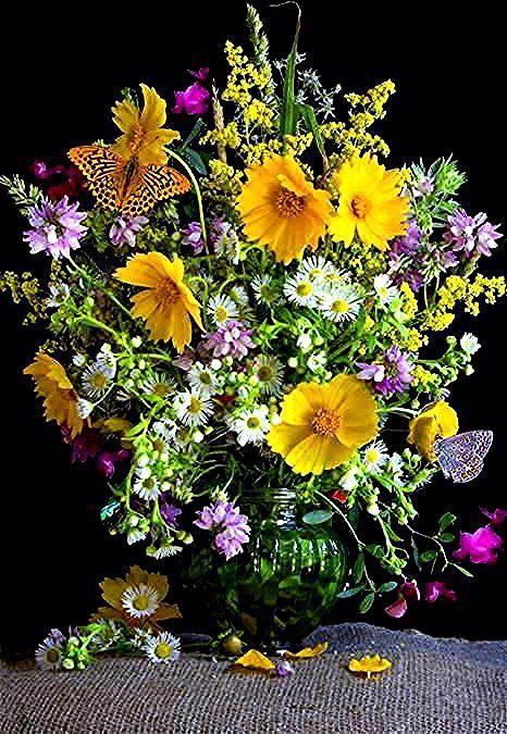 immagini-buongiorno-fiori_70