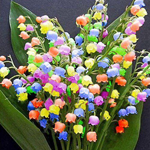 immagini-buongiorno-fiori_71