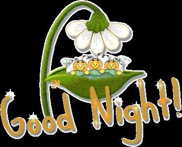immagini-buona-notte_1632