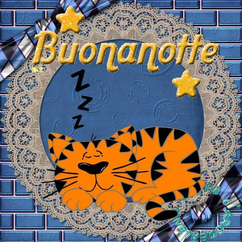 immagini-buonanotte-bacionotte_0731