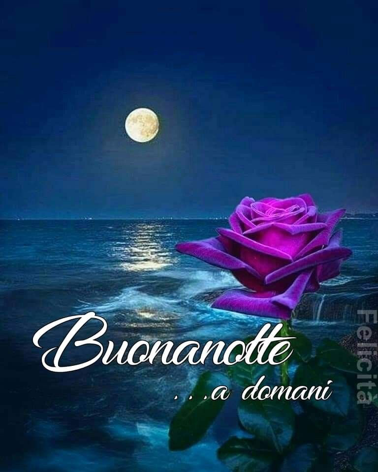 immagini-buonanotte-bacionotte_0906