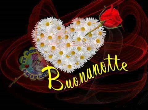 immagini-buonanotte-bacionotte_0943