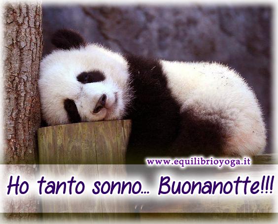 immagini-buonanotte-bacionotte_1022