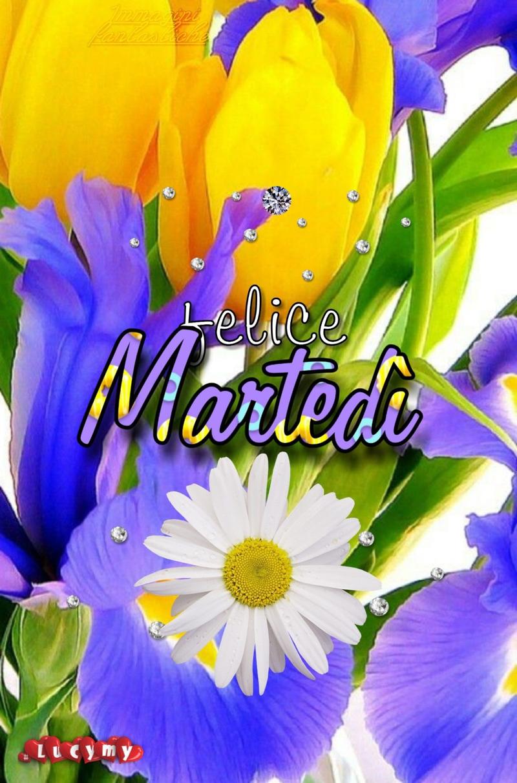 immagini-buongiorno-buon-martedi_574