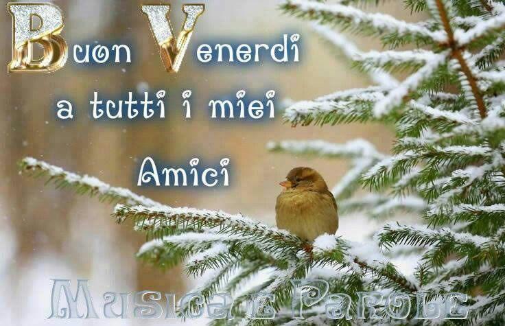 immagini-buongiorno-buon-venerdi_765