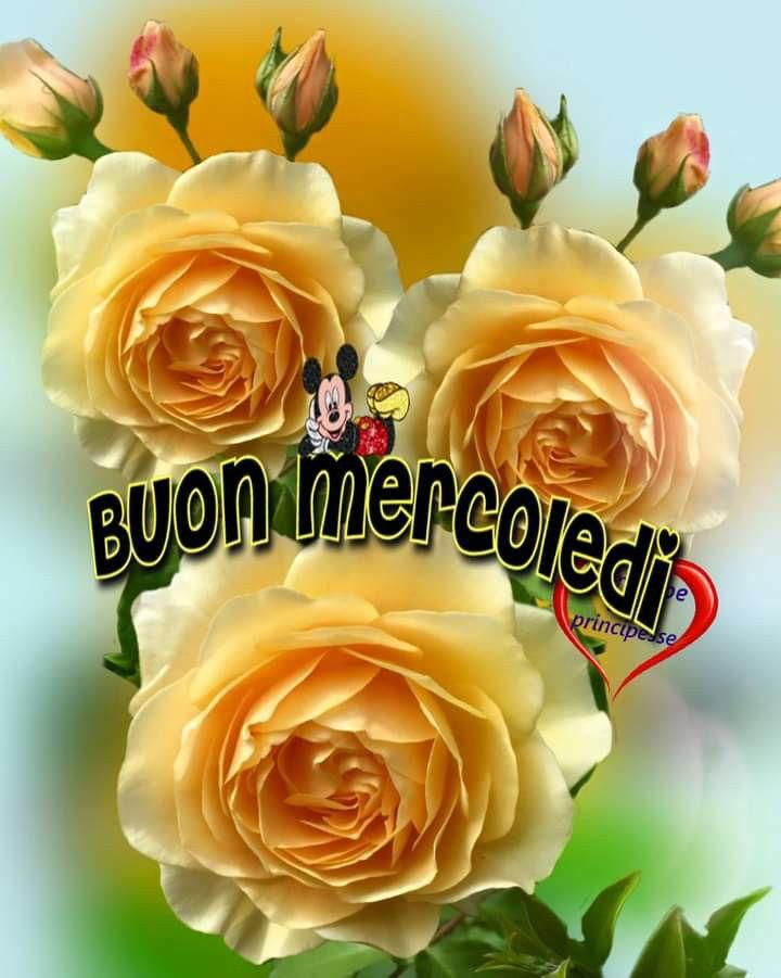 immagini-buongiorno-buon-mercoledi_904